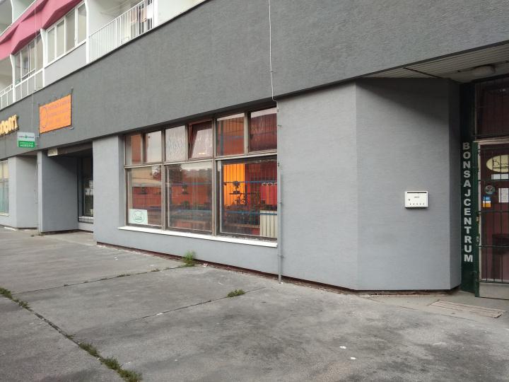 Bonsajcentrum Bratislava