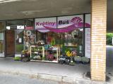 Brno, Královo pole, Palackého tř. 137, Květiny