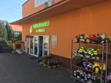 Minimarket U Haika