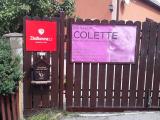 Psí salon Colette