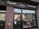 Ibloom Flower Boutique