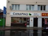 CANAPINO